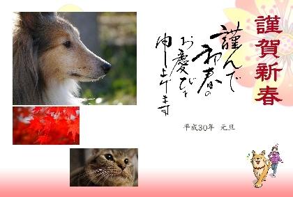 デザイン_2018010101_R.jpg