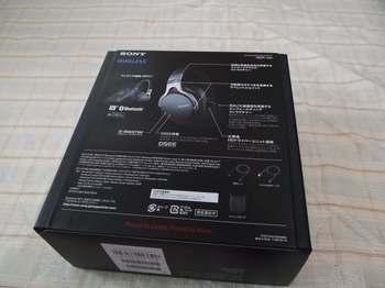 P1050648_R.JPG